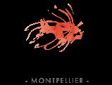 Camille Lafon Photographe – Montpellier sud de france Logo